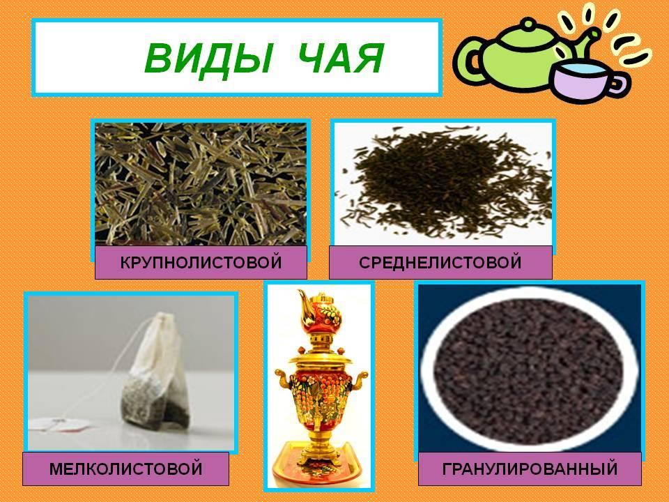 Чай гранулированный польза и вред