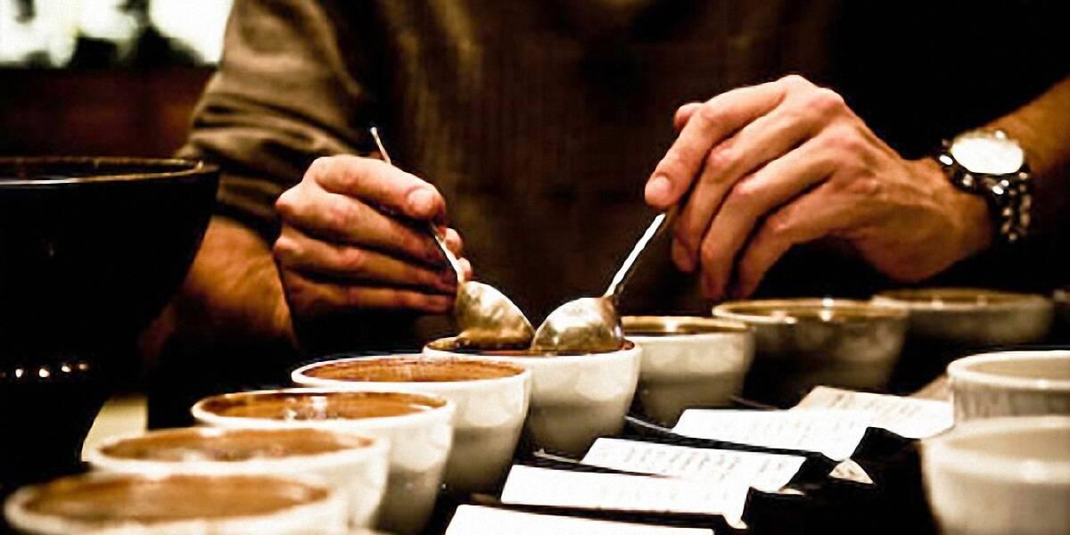 Как провести дегустацию кофе в домашних условиях
