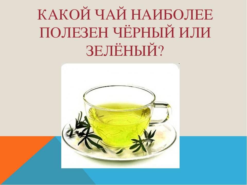 Какой чай полезнее - зеленый или черный