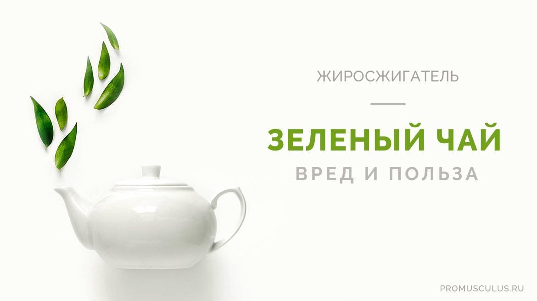 Полезные свойства зелёного чая и его влияние на организм мужчины