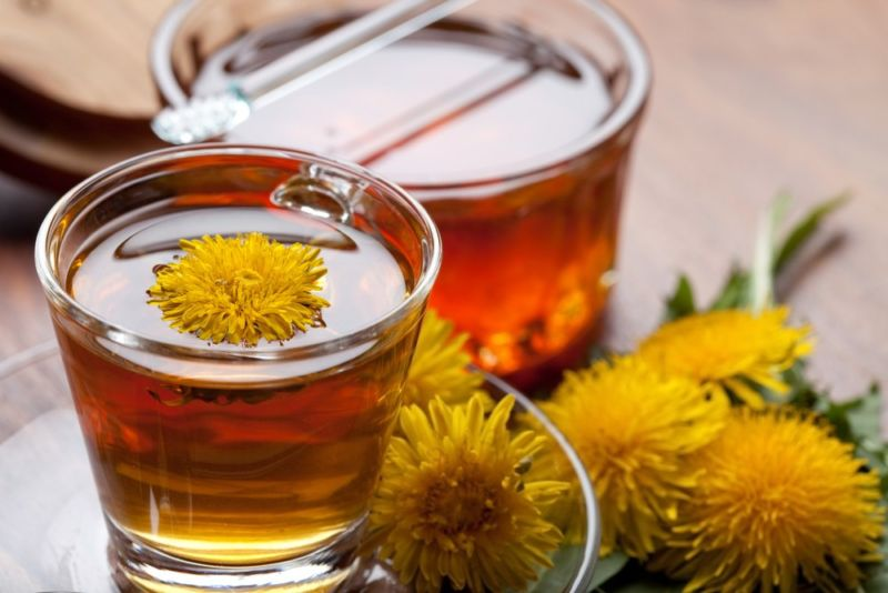 Тыква: лечебные свойства тыквы и 8 народных рецептов здоровья