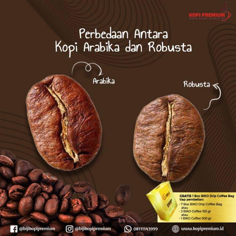 Основные различия между сортами кофе арабика и робуста