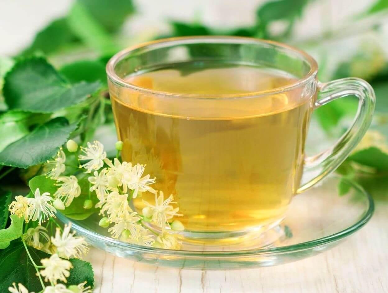 Липовый чай - полезные свойства и противопоказания