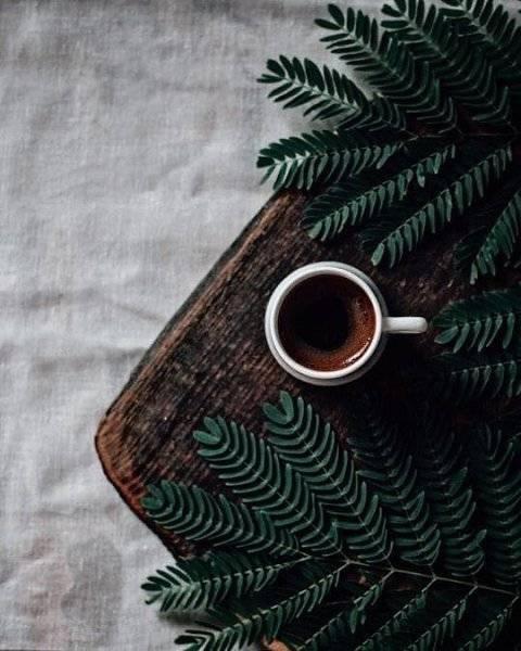 Кофе с овсяным молоком - как называется, какой вкус, польза, рецепты приготовления, калорийность