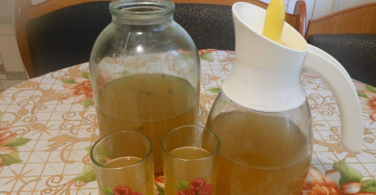 Квас в домашних условиях быстрого приготовления рецепт на 3 литра