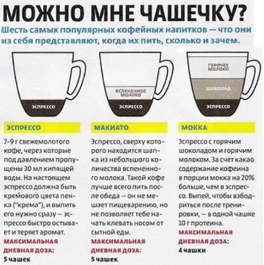 Кофе —польза или вред? сколько кофеина содержится в чашке кофе?