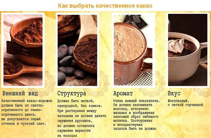 Какао-порошок (натуральный, растворимый): состав, из чего состоит, польза и вред