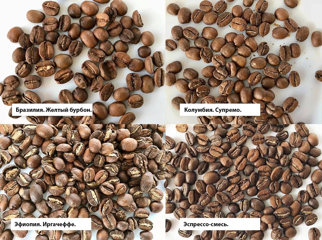Филиппинский кофе: особенности, виды, сорта, известные марки