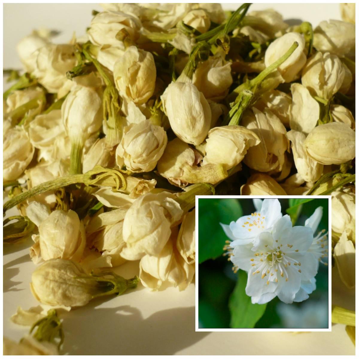 Как правильно сушить листья чая: заготовка, хранение