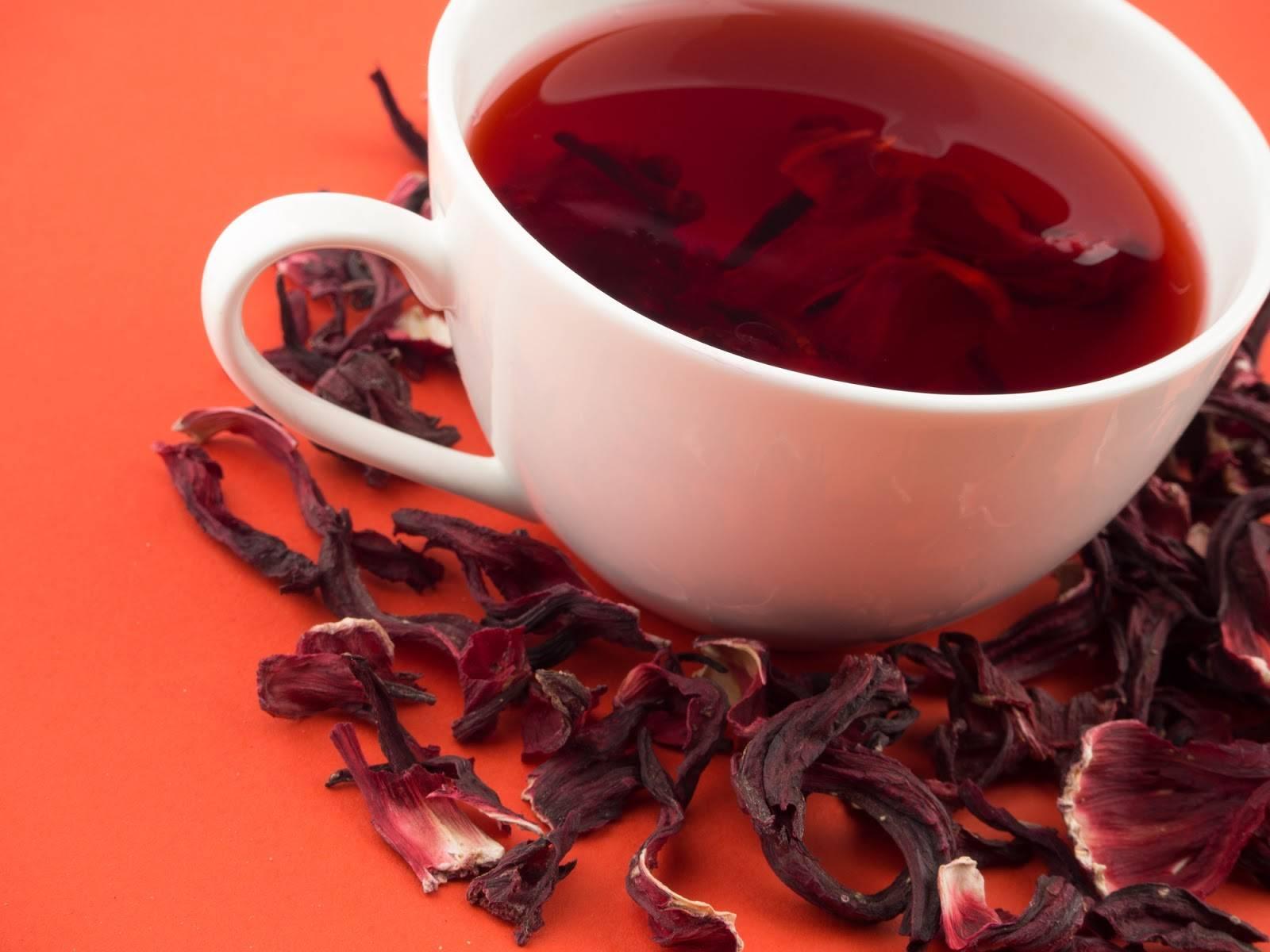 Гибискус польза и вред для здоровья чая