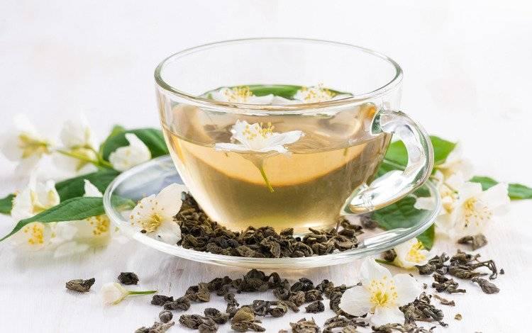 6 полезных веществ жасминового чая. правила чаепития