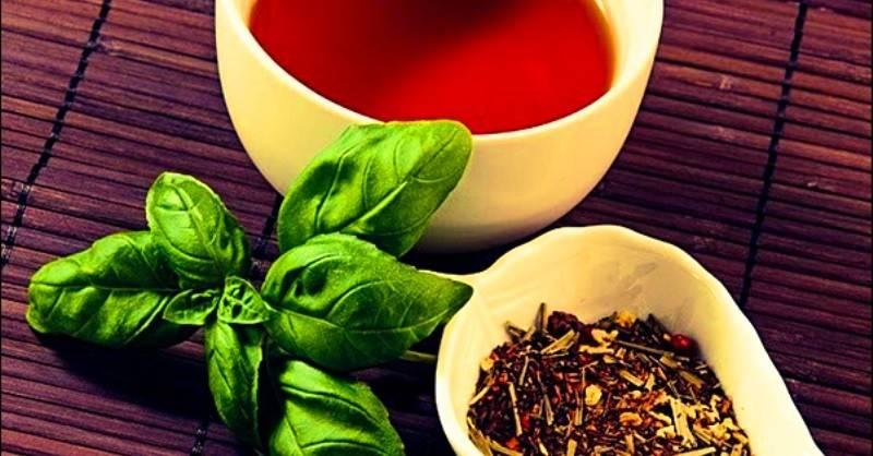 Чай с базиликом: рецепт, особенности приготовления, полезные свойства
