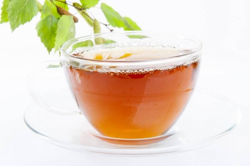 Свойства чая из березовых листьев и рецепты приготовления