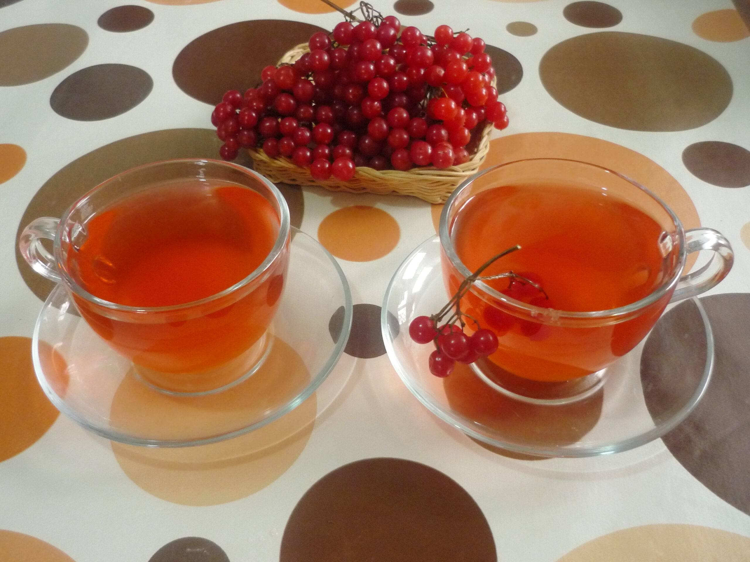 Чай с калиной: польза и вред, как заваривать от простуды