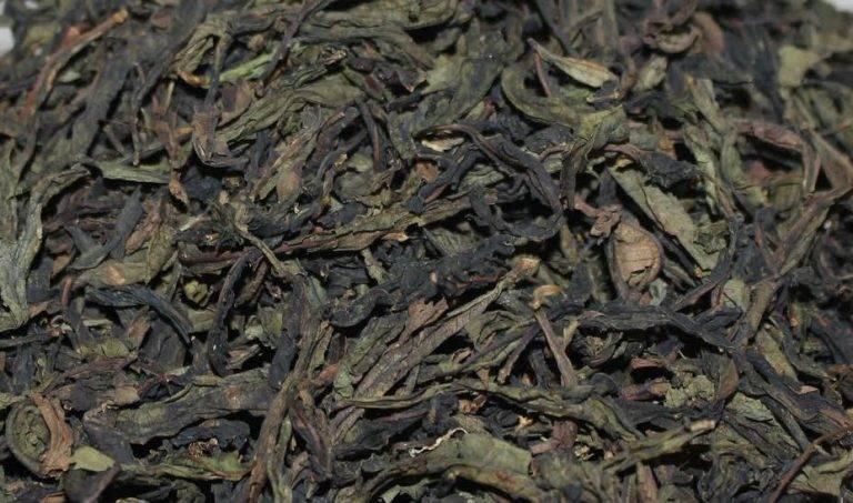 Немного о биохимических механизмах ферментации чая - teaterra   teaterra
