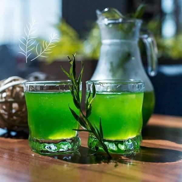Чай с тархуном: полезные свойства и противопоказания, химический состав и рецепты приготовления, а также где купить и как хранить эстрагон? русский фермер