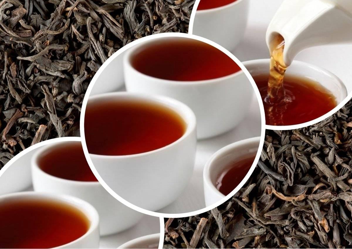 Перченый чай: простые рецепты