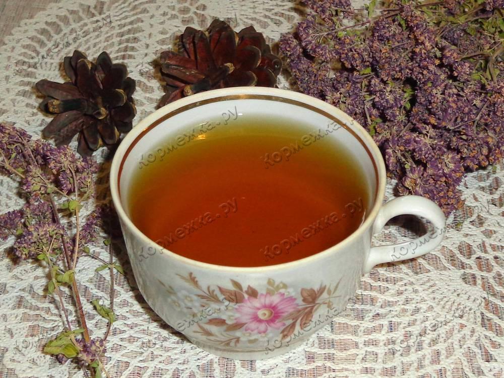 Чай из душицы лечебные свойства