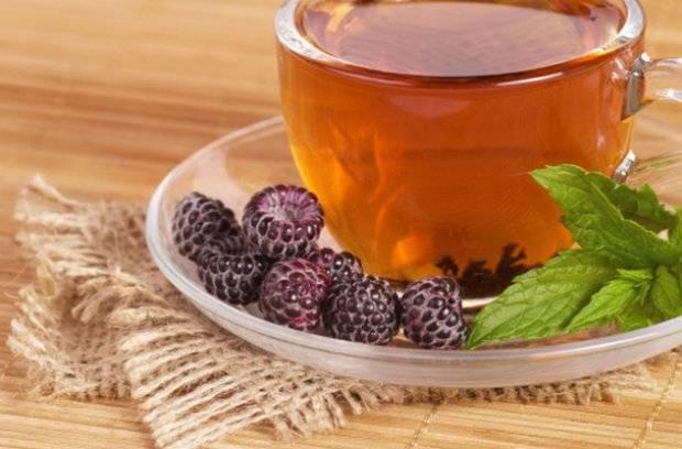 Ежевика: полезные свойства ягоды и противопоказания к применению, рецепты, выбор и хранение