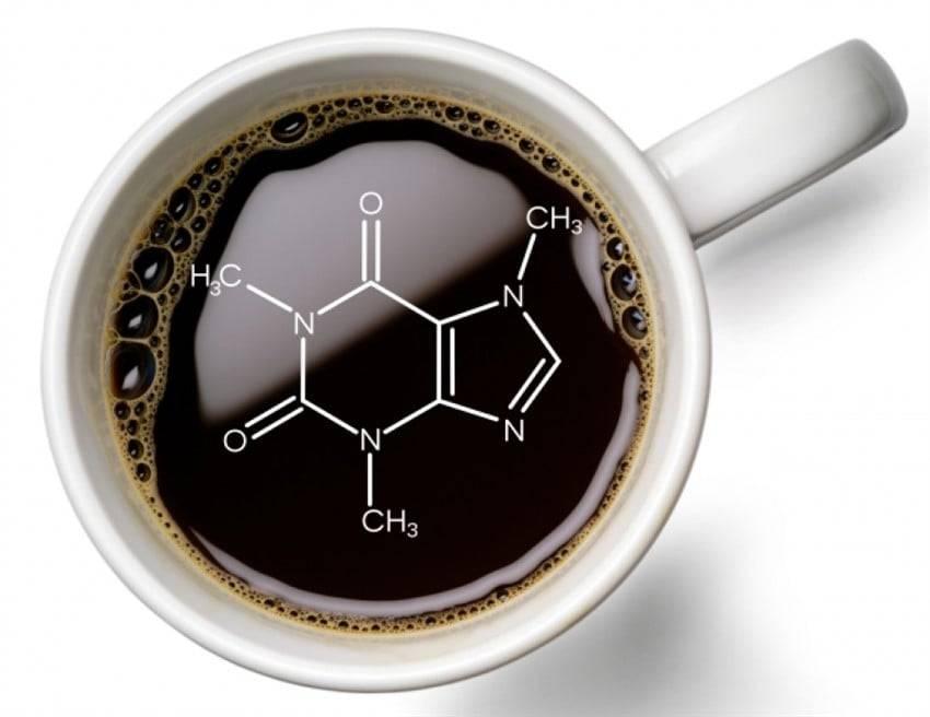 Химический состав кофе. диаграммы и таблицы компонентов, из которых состоит зерновой и растворимый кофе