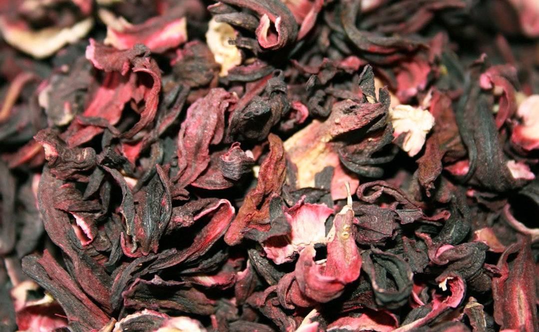 Чай каркаде: свойства, польза, вред и противопоказания к приему