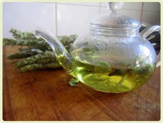 Мурсальский чай: подарок природы из болгарии