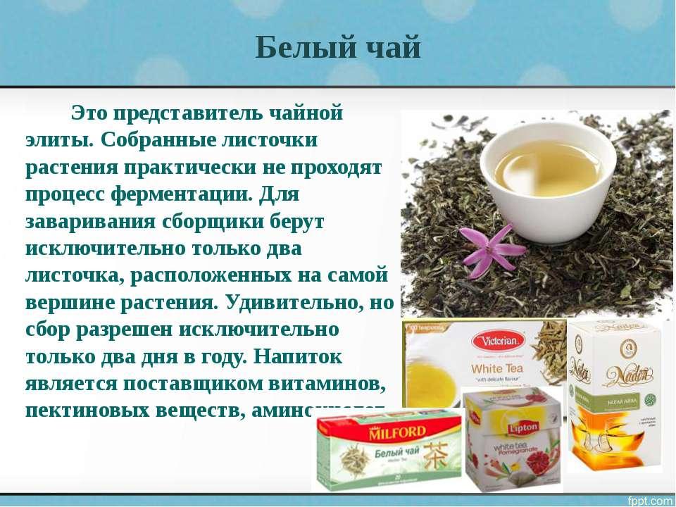 Белый чай. состав, польза, свойства и как заваривать белый чай. женский сайт www.inmoment.ru