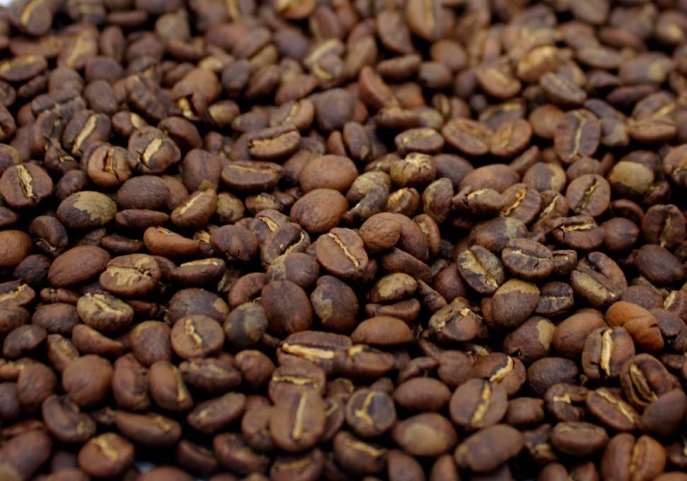 Сорт кофе желтый бурбон: описание и страны выращивания