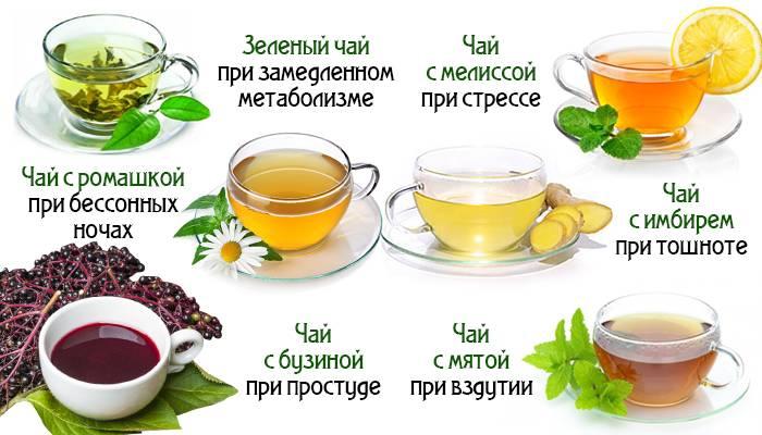 Зеленый чай для похудения: как помогает и можно ли его пить на ночь