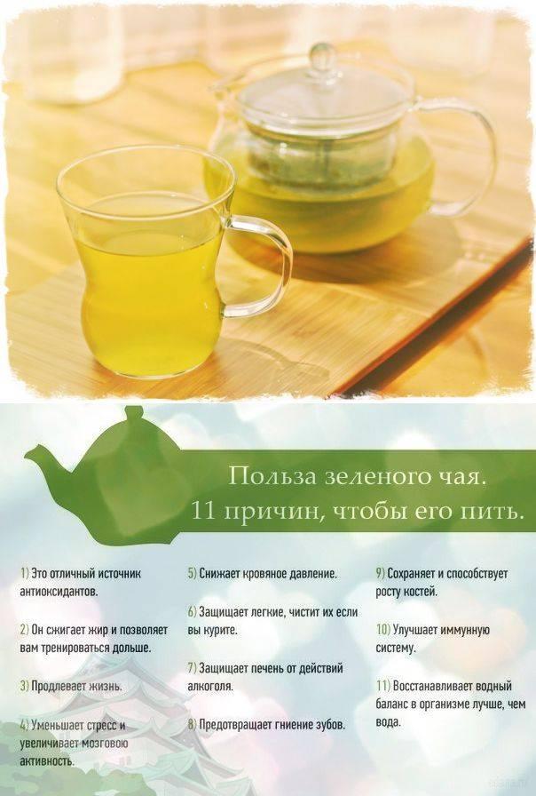 Диета на зеленом чае — похудение, калории, отзывы