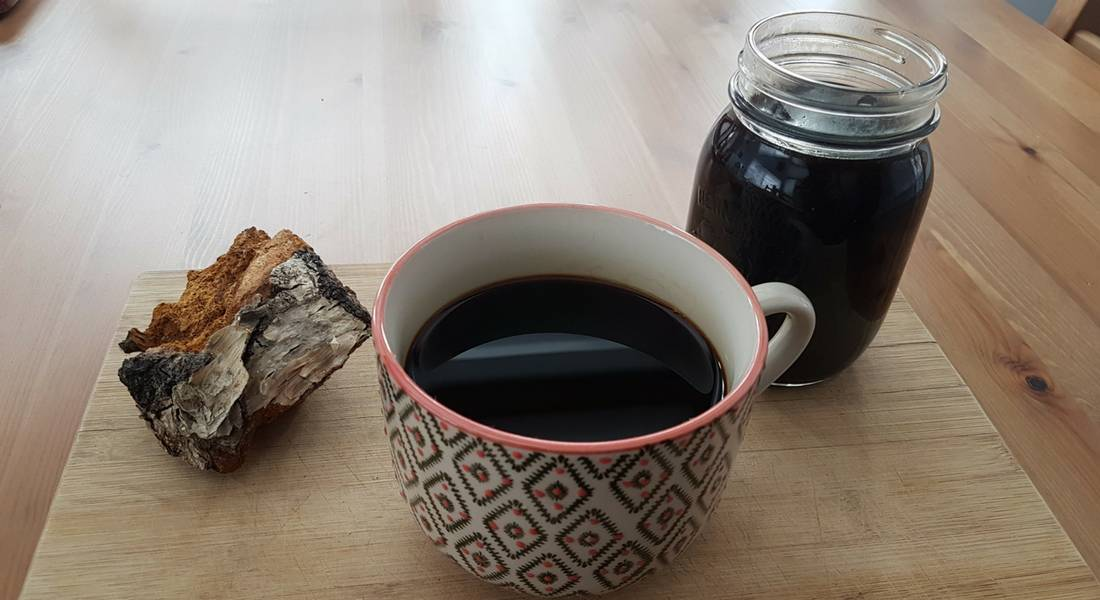 7 рецептов чая из чаги (+полезные свойства и противопоказания)