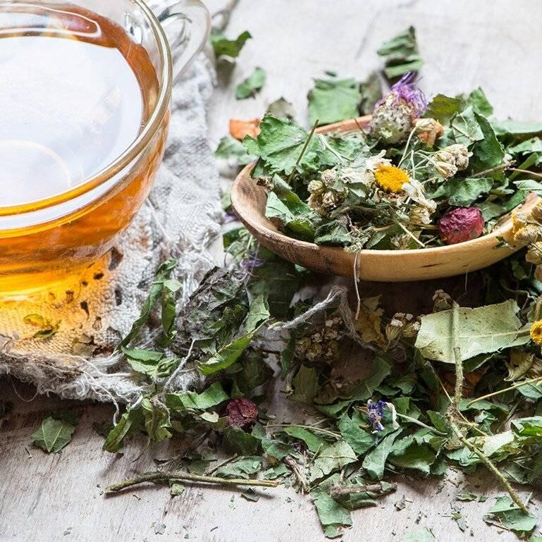 Витаминный чай как правильно заваривать рецепты
