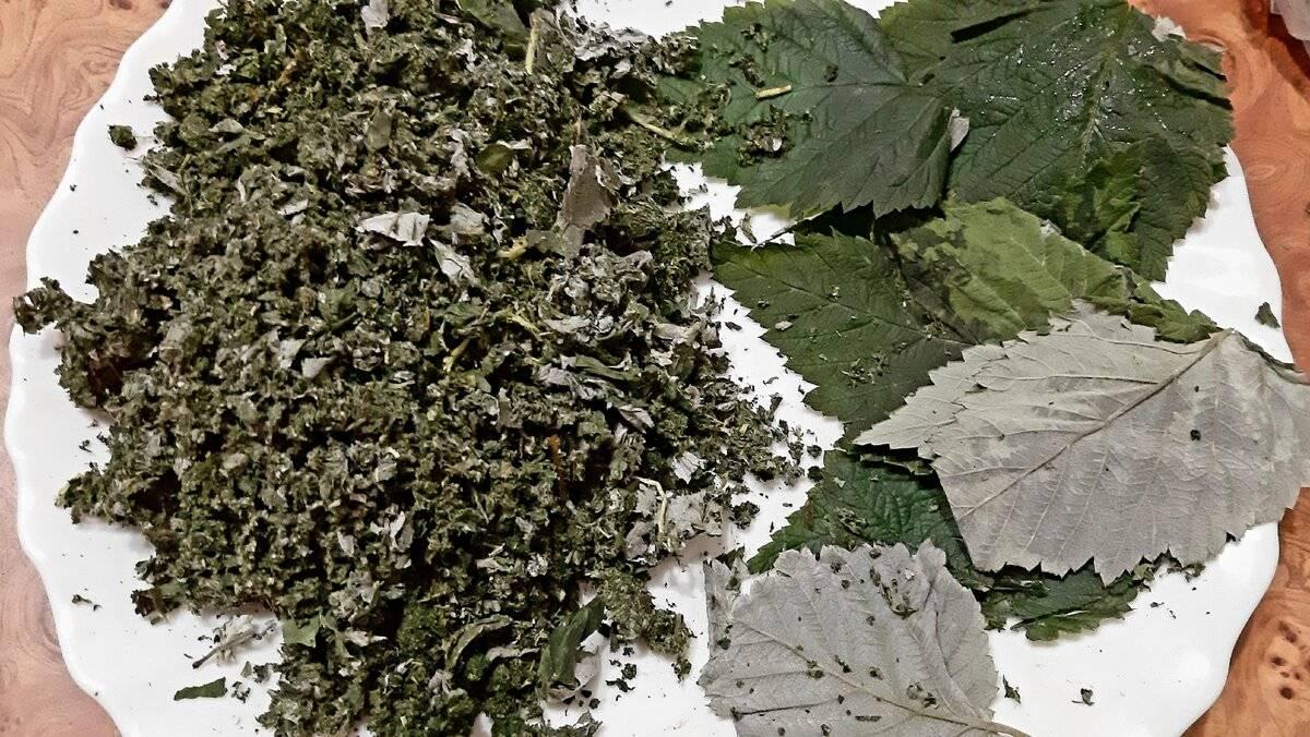 Чай из листьев малины: польза и возможный вред   польза и вред