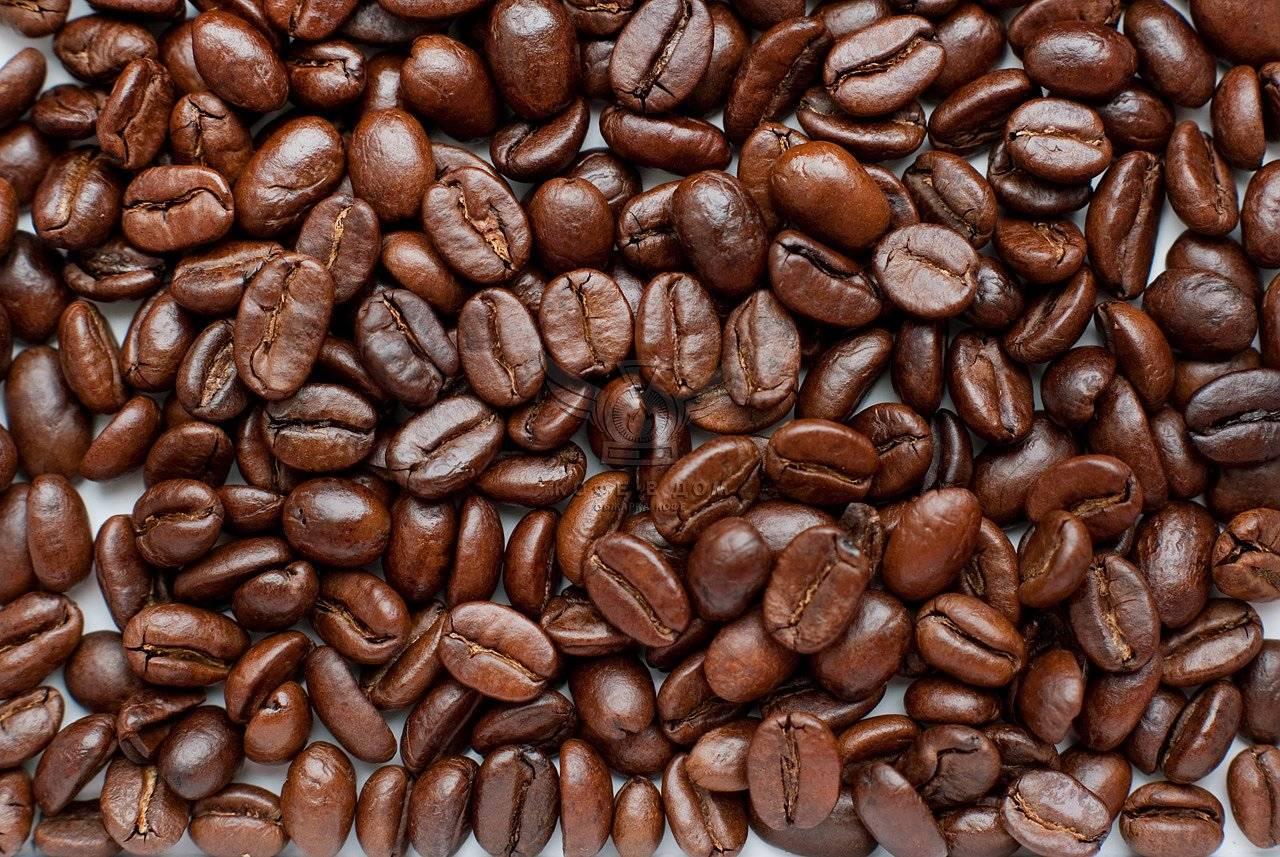 Как приготовить кофе в капсулах в кофемашине и без нее – рецепты капсульного кофе в блоге интернет-магазина капсбутик