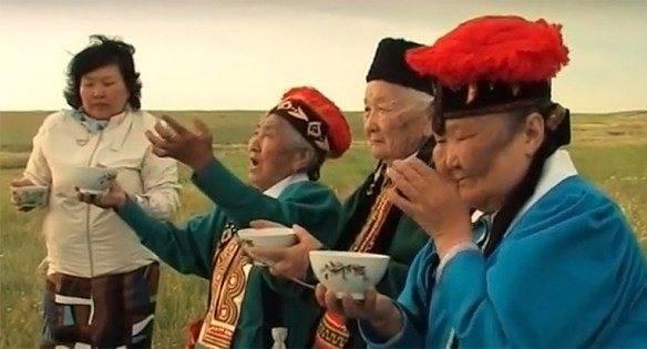 Калмыцкий чай – вред и польза, способы заваривания напитка