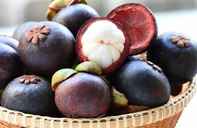 Фрукт мангустин: полезные свойства, польза в применении в лечебных целях, вред и противопоказания