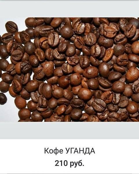 Кофе сорта либерика – редкость в местных магазинах