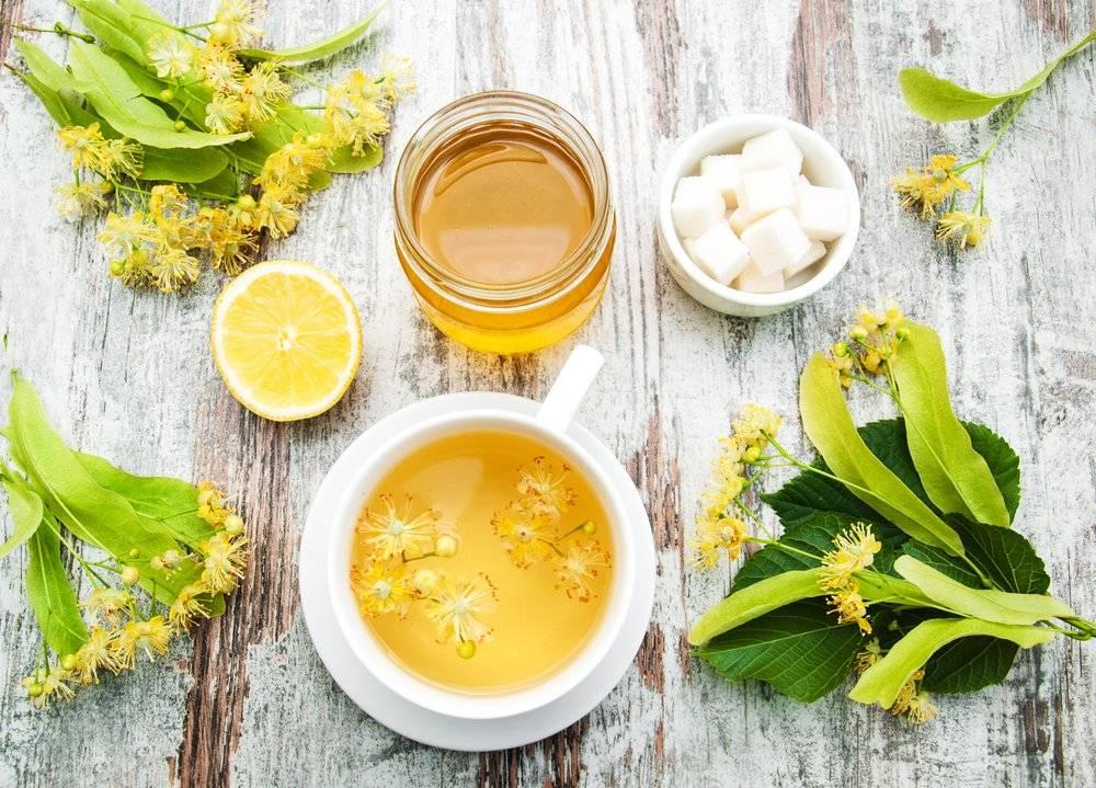 Липовый чай - полезные свойства и противопоказания, польза и вред