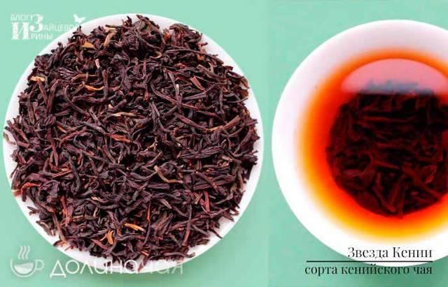 Крепкий, бархатный и густой — кенийский чай