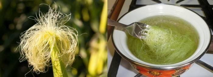Кукурузные рыльца: применение, рецепты, лечебные свойства и противопоказания