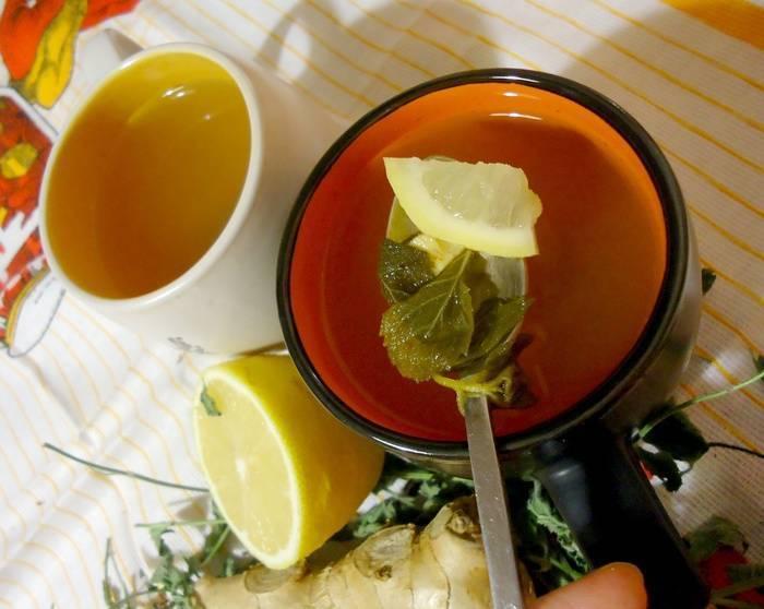 Напитки из имбиря при простуде: рецепты приготовления и применение, противопоказания
