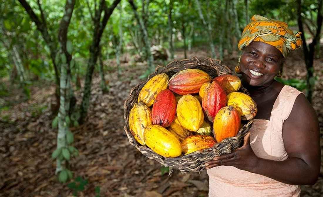 Характеристика кофе из руанды