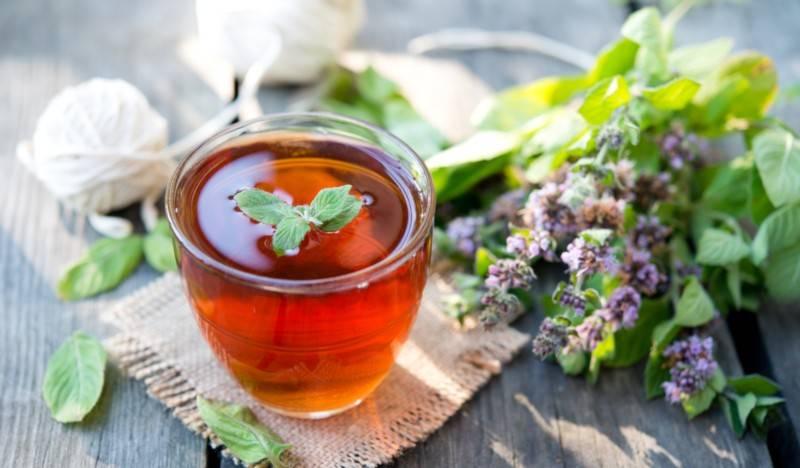 Чай с мелиссой: что нужно обязательно знать перед употреблением