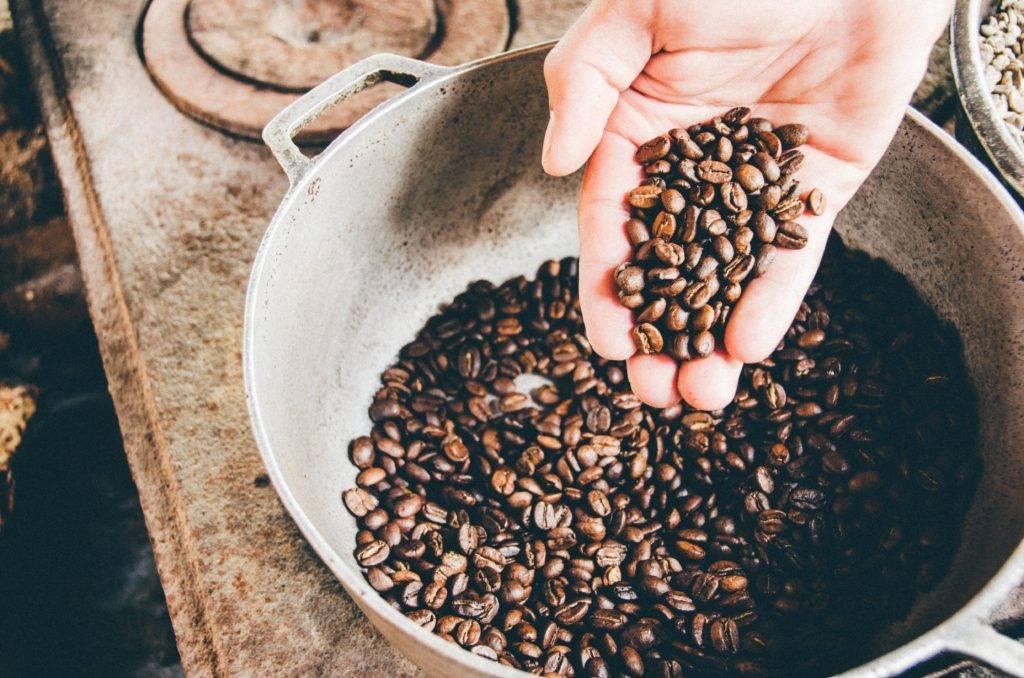 Популярные сорта кофе в Индии
