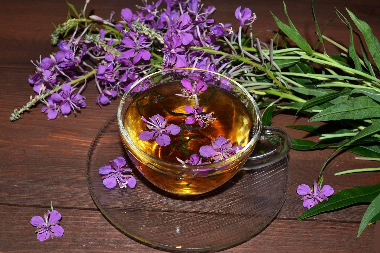 Помогает ли иван чай при сахарном диабете - помощьдиабетику