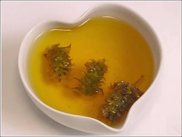 Мурсальский чай - полезные свойства и противопоказания