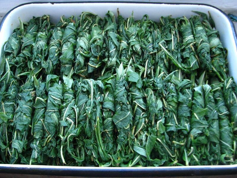 Ароматная и полезная трава – мелисса. когда заготавливать растение на зиму и как правильно его хранить?