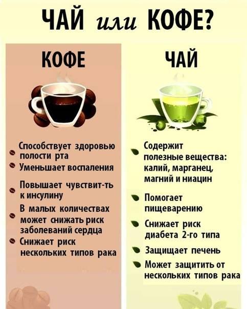 Почему нельзя пить много кофе и что будет, если пить кофе в больших количествах