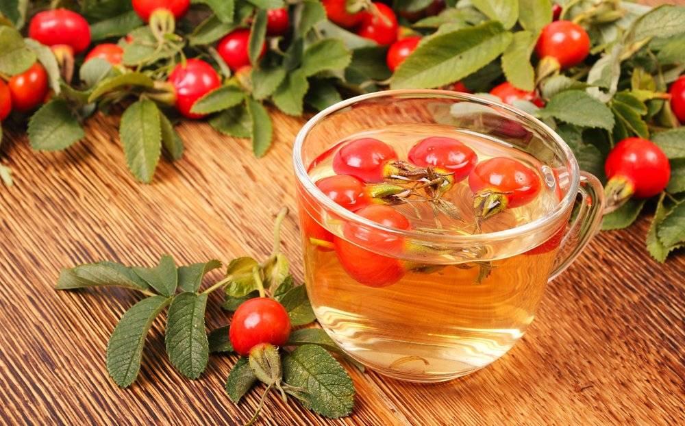 Чай с лавандой: польза и вред для организма