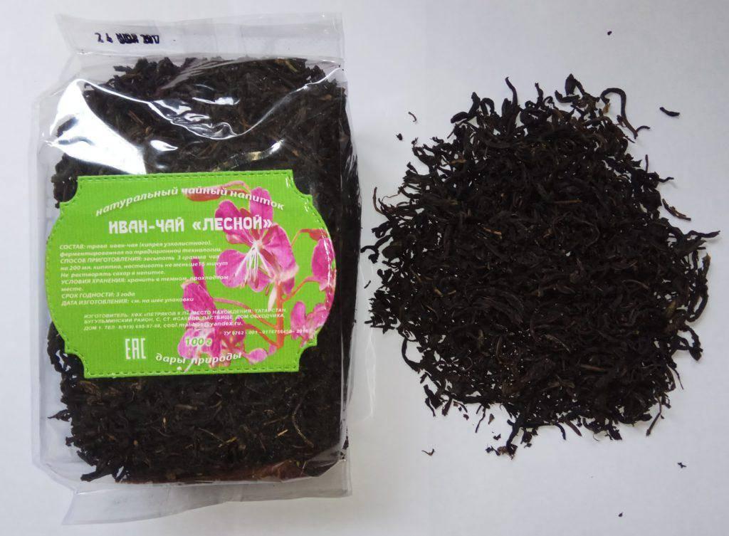 Иван-чай: польза и вред для здоровья, как заваривать и принимать